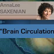 Ուղեղների շրջանառություն
